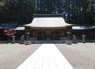minashi_1