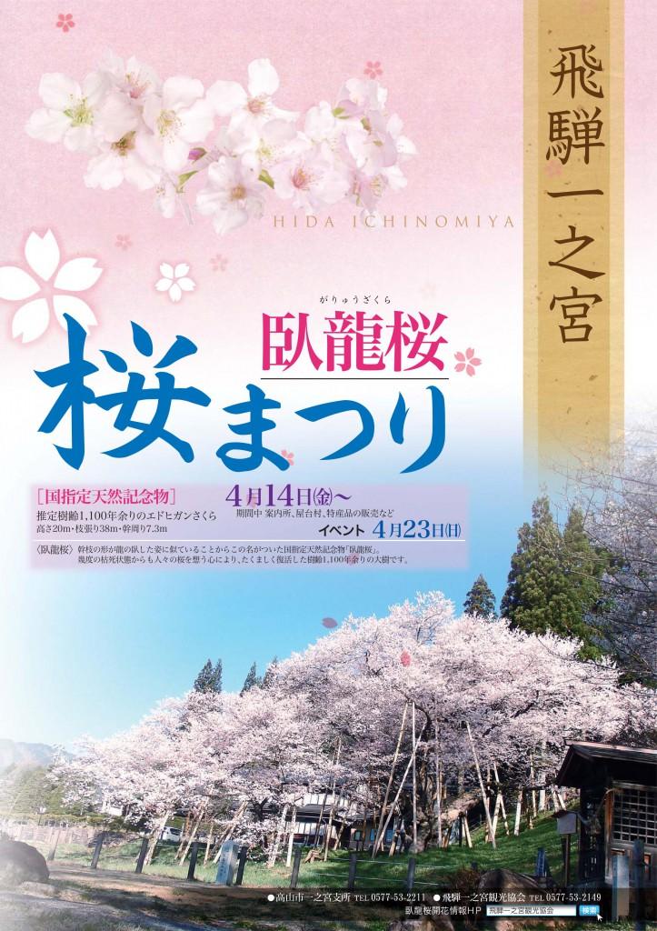 臥龍桜「桜まつり」